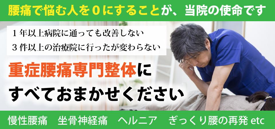 市川駅徒歩4分 体験談多数 病院の治療で改善しない、手術を勧められるほどの腰痛でお悩みのための、重症腰痛専門整体院